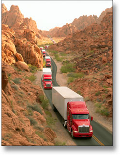Domestic Transportation and Cartage
